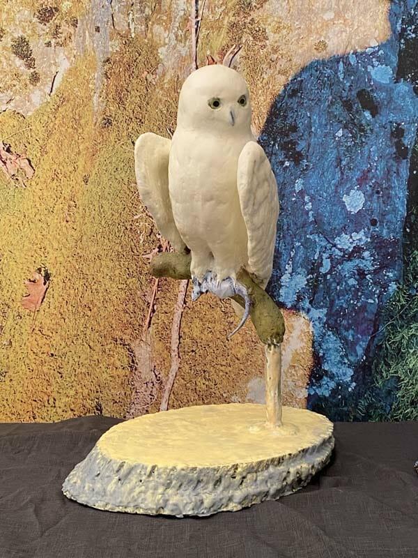 David Fitzgerald: Owl #7