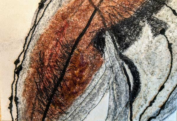 Joan Diamond: Untitled
