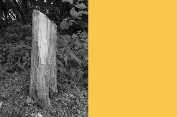 Robert Kamand: Untitled